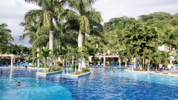 這裡的泳池很大,不過沒有分好幾個,是不規則形狀的泳池